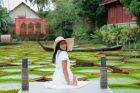 Leknín Viktorie královská je největší vodní rostlina na světě