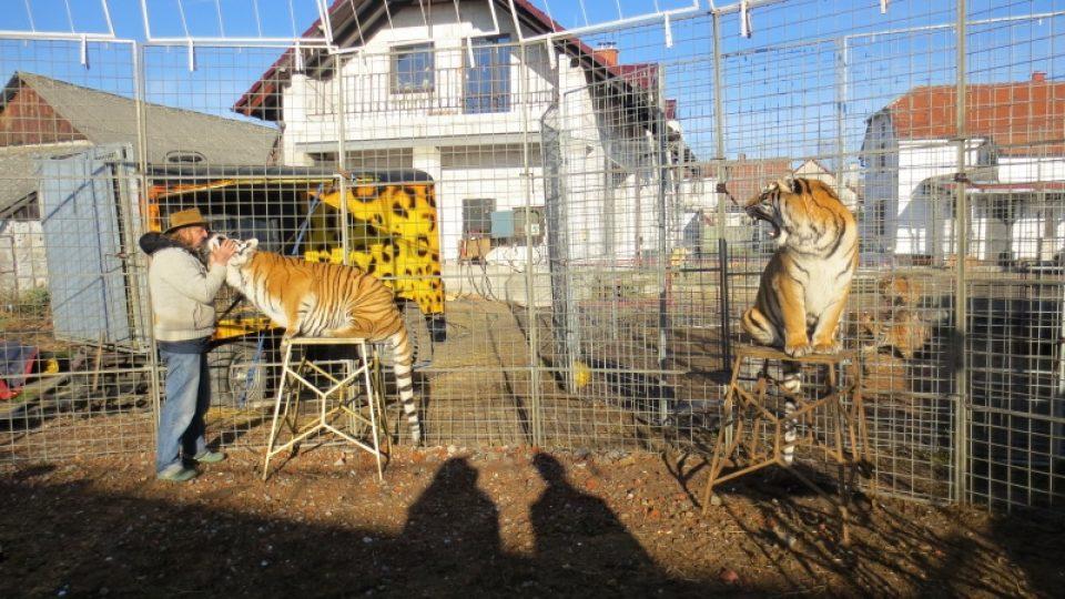 Jaromír Joo a jeho tygři