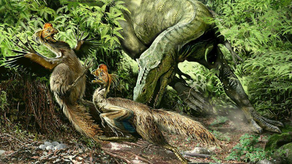 Alioramus a oviraptors