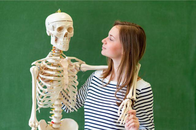 Víte, kolik kostí je v lidském těle?