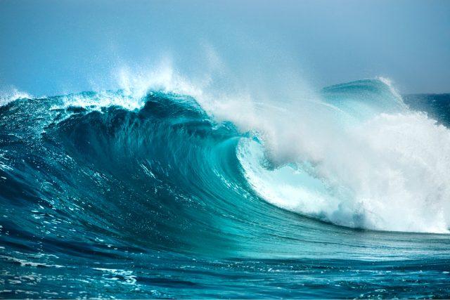 Přrč je moře slané?