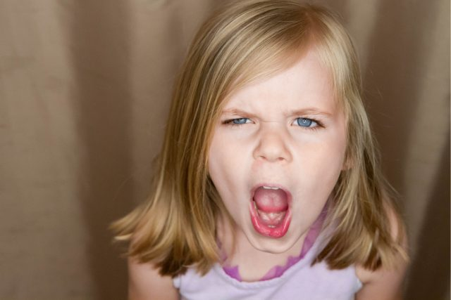 Proč se vztekáme? | foto: Shutterstock
