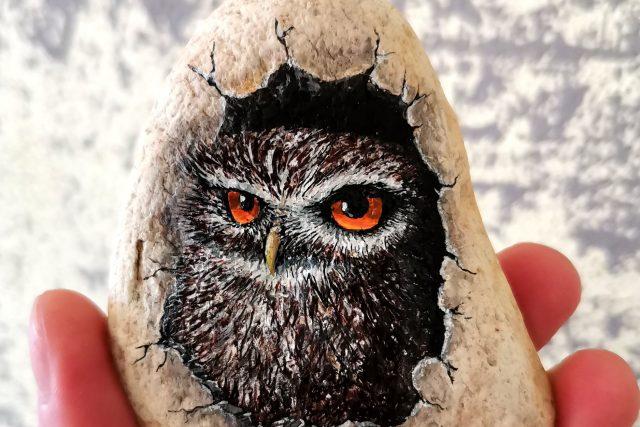 Ze správně zvoleného kamínku na vás může vykouknout i sovička | foto: Ondřej Musil