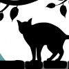 Černá kočka na zdi