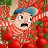 Fráňa a rajčata